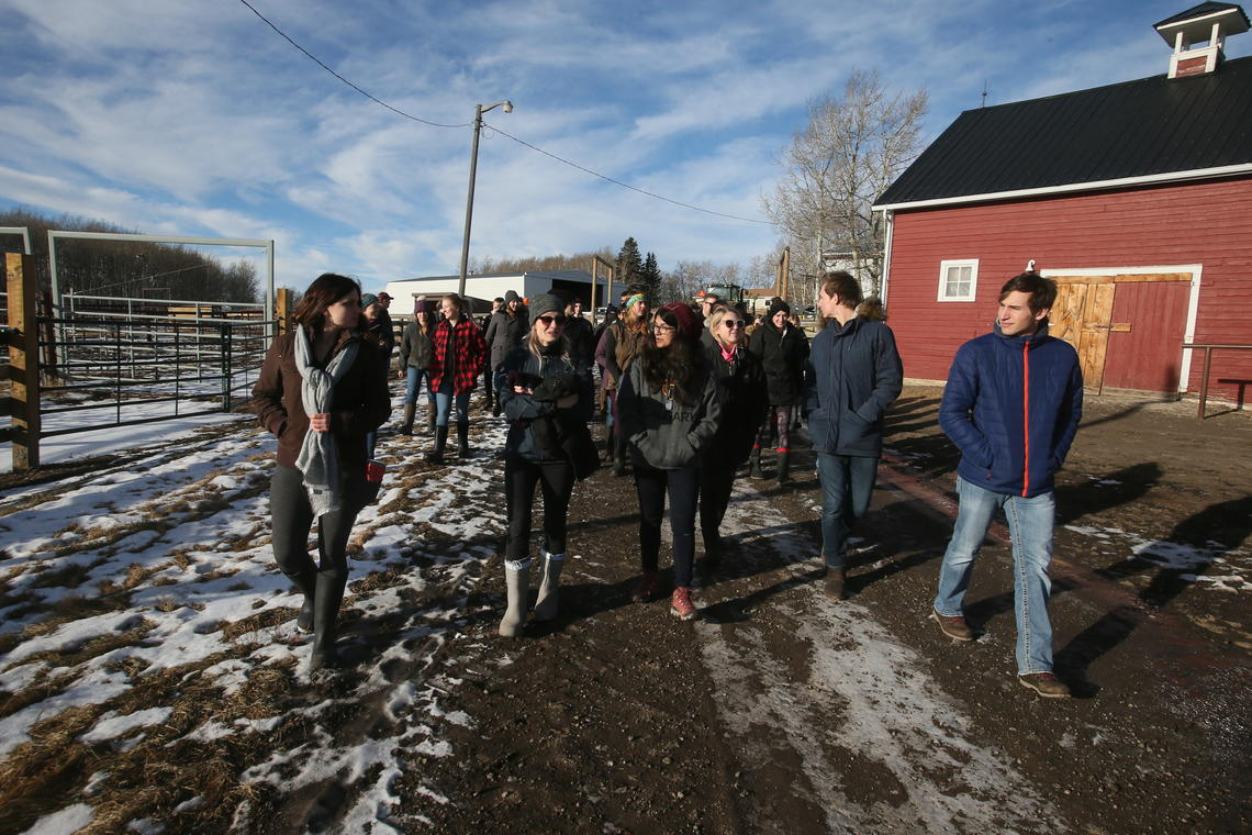 Students' first tour of the extensive W.A. Ranches property included cattle processing facilities and outbuildings.