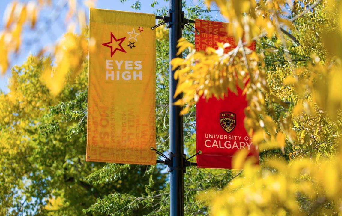 Two University of Calgary-led research teams have been successful in this Government of Alberta grant competition.