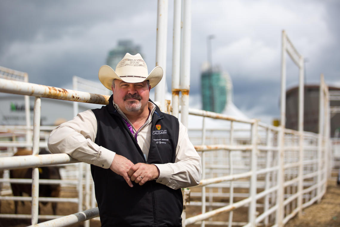 Ed Pajor has been conducting research at the Calgary Stampede for the past seven years.