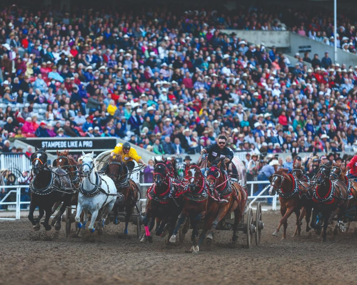 The GMC Rangeland Derby showcases world-class chuckwagon drivers.