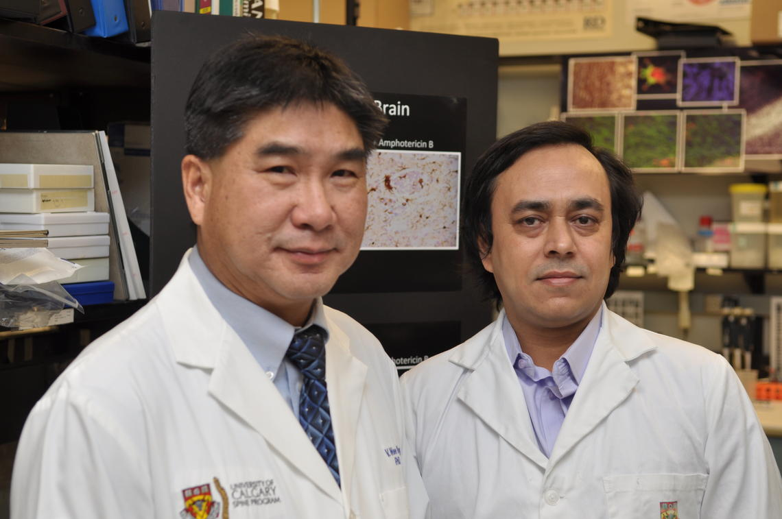 V. Wee Yong, PhD, and research associate Susobhan Sarkar, PhD, identified a mechanism implicated in brain cancer and a drug that decreases brain tumour growth.