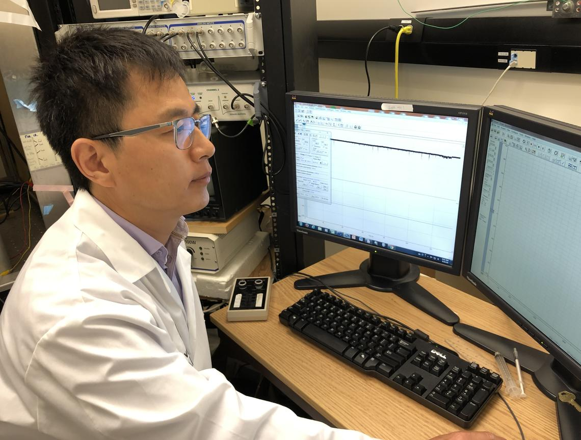 Zizhen Zhang records and analyzes the activity in each brain cell.