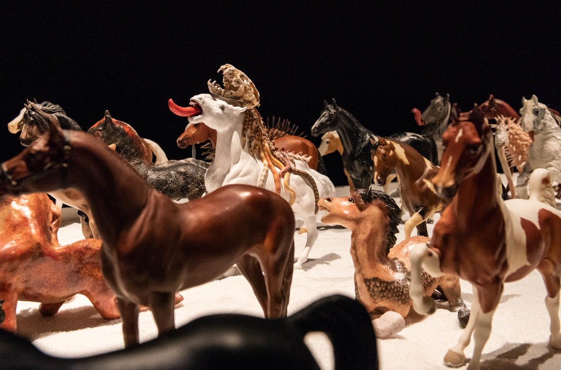 Herd by Diana Thorneycroft, installation at Nickle Galleries, 2020.