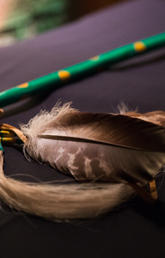 Indigenous Strategy and Law School Courses