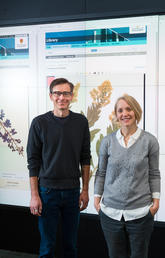 Herbarium director Jana Vamosi, right, with digital special projects associate Rob Alexander, who oversaw the creation of the new online Flora of Alberta collection. Photo by Riley Brandt, University of Calgary
