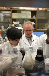 Dr. Pere Santamaria, centre, has discovered a way to use nanoparticles coated in proteins to treat autoimmune and inflammatory disorders. With him are Kun Shao, left, and Yang Yang.