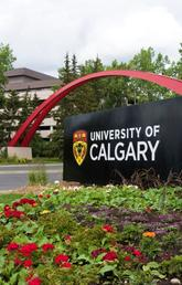 UCalgary ranked 128th in the world by Leiden University