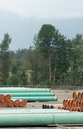 Pipe for pipelines lays piled on ground