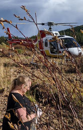 The helicopter waits as researchers collect samples and data at a site on the Tay River