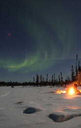 Aurora borealis appearing over Prospect Lake, near Yellowknife NWT