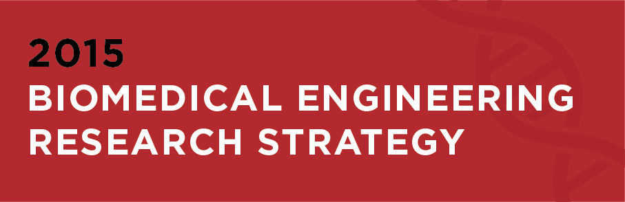 Biomedical Engineering Research Strategy